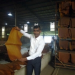 one man showing RSS rubber sheet in the factory